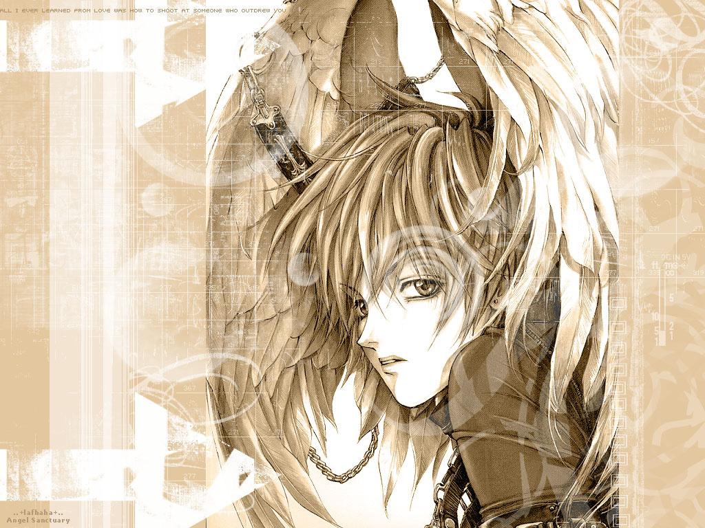 Angel Sanctuary Manga