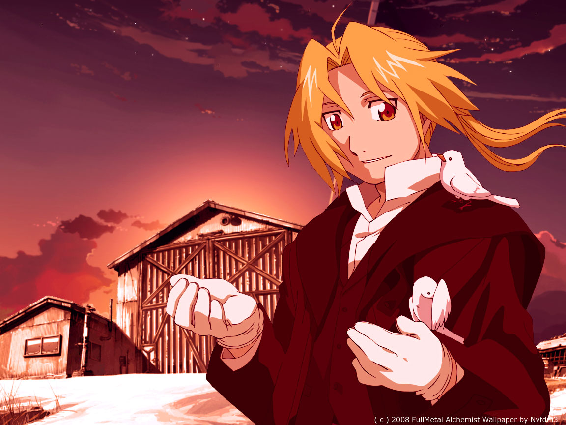 full metal alchemist 05 free high ranked hd anime desktop